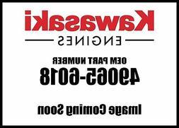 Kawasaki Engine Kit Oil Filter 49065-6018 New OEM