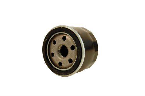 MTD Genuine Parts Replacement Oil Filter for 420cc Powermore